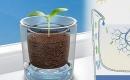 水回收花盆 有效減少澆水次數