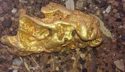澳大利亞男子外出野遊撿到5斤純天然金塊