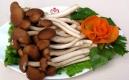 蘑菇還是少吃一點吧