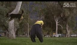 【掘圖志】慢鏡頭展示跑酷高手與跑酷狗的對決