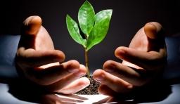 創業不是先有錢,而是先有膽