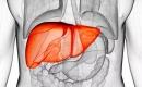 六步助你排出肝臟毒素