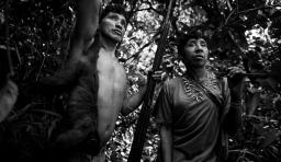 一個以捕獲猴子為主要食物的部落生活寫照,他們越來越難以生存